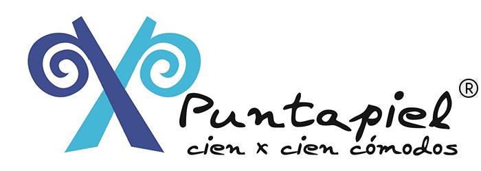 Puntapiel